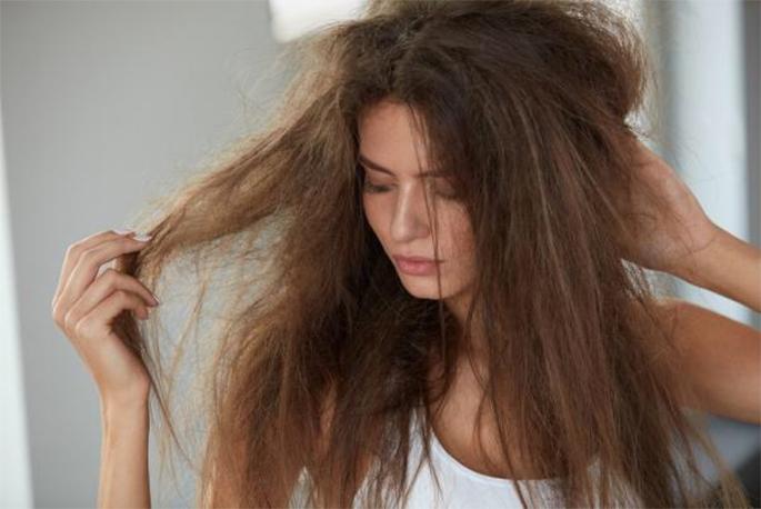 jojoba para el cuidado del cabello